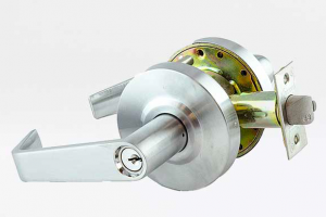 commercial-lever-lock-locksmith-lion.png
